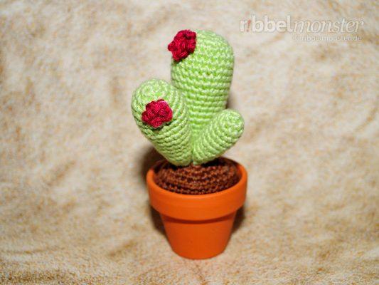 "Amigurumi – Crochet Cactus ""Olig"""